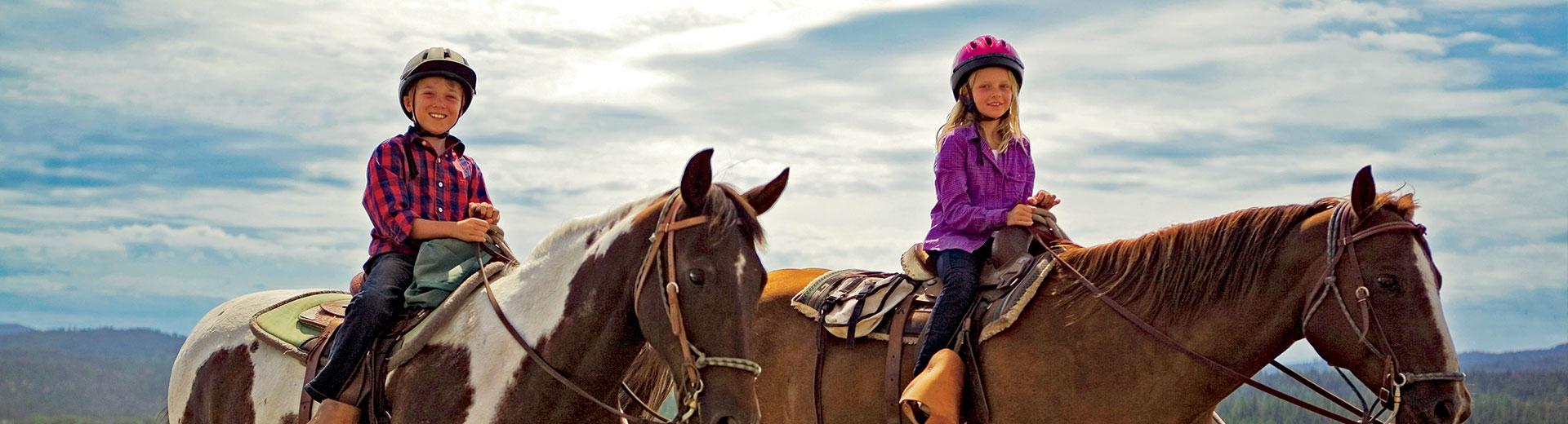 Equestrian Lessons