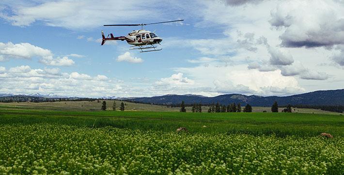 Glacier National Park Helicopter Tour