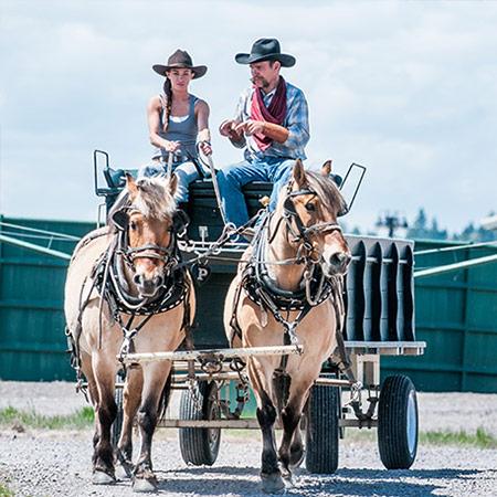 Wagon Team Driving