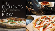 The Elements of Pizza Overview