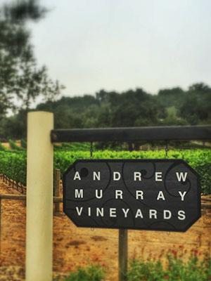 Andrew Murray Vineyards