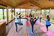 Variety of yoga programs