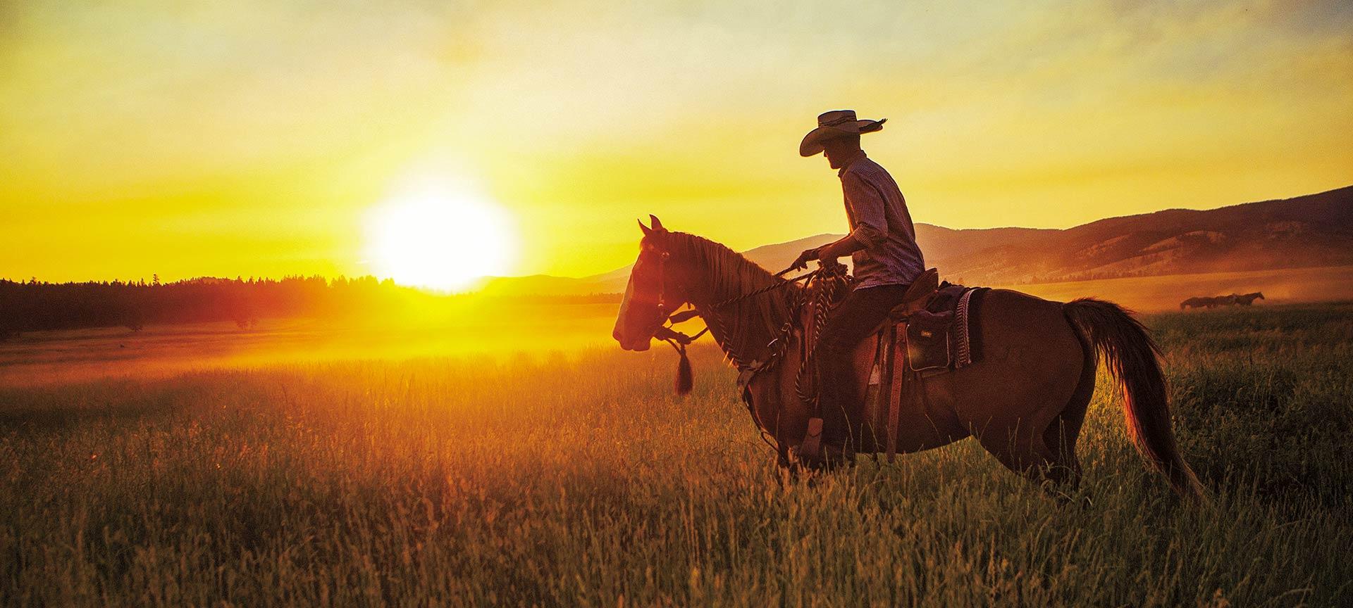 Horseback riding at sunset.