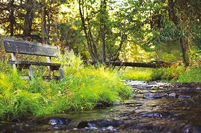 Creekside Camp - Elk Creek