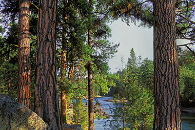 Pinnacle Camp - View of the Blackfoot River