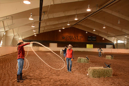 The Saddle Club Arena