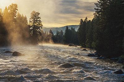 Montana Elk Creek