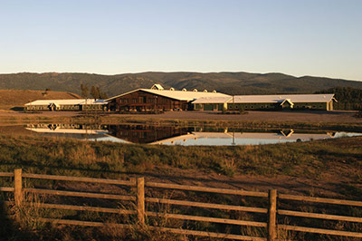 Saddle Club Exterior